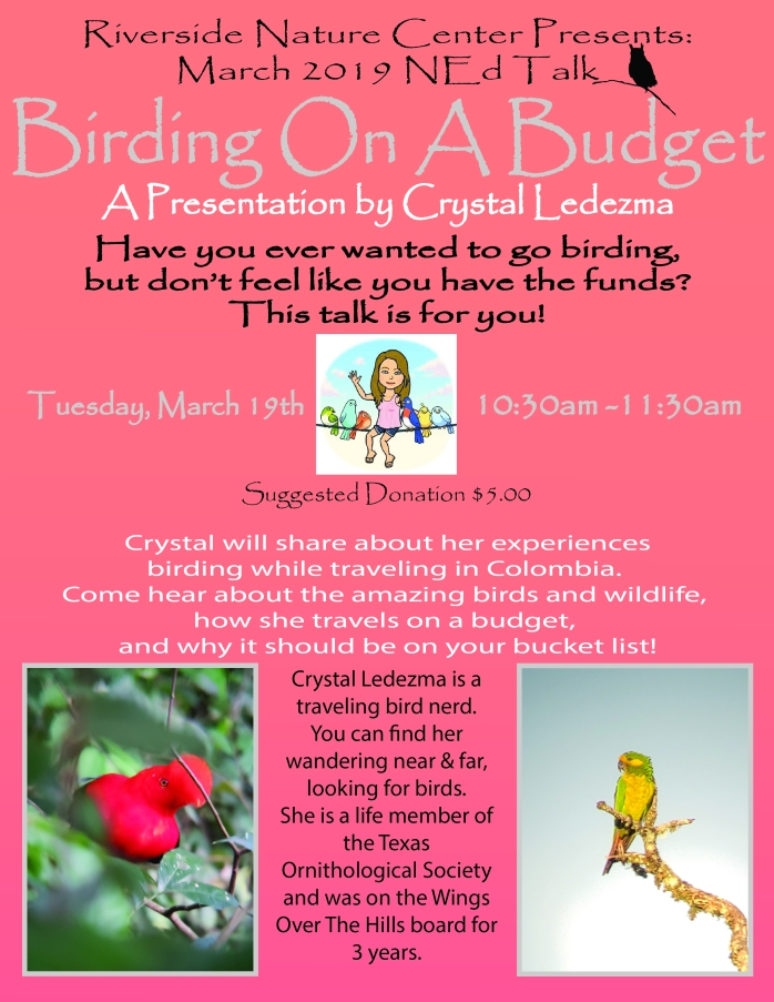Birding on a budget-01